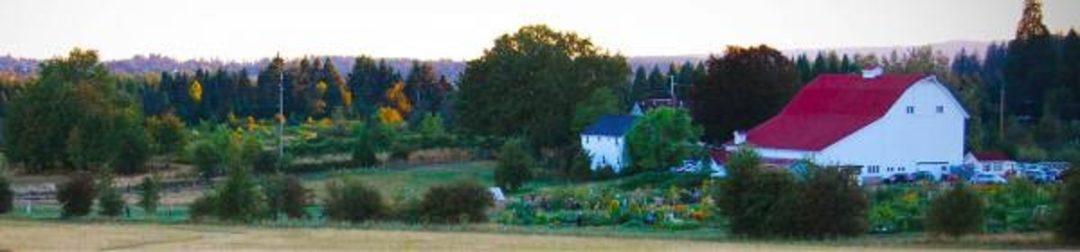 luscher-farm-1